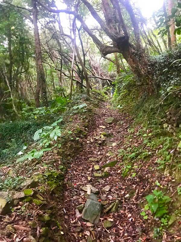 SGKT_16_Kunisaki_trail.jpg