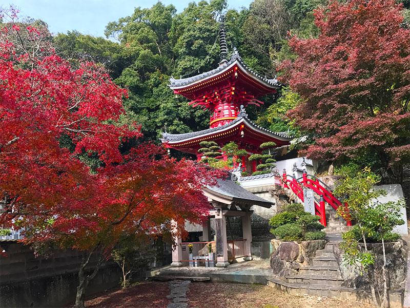 SGSTP_24_Shikoku_temple.jpg