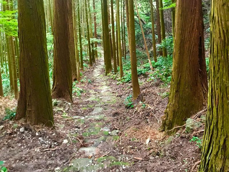 SGKT_17_Kyusentoji_path.jpg