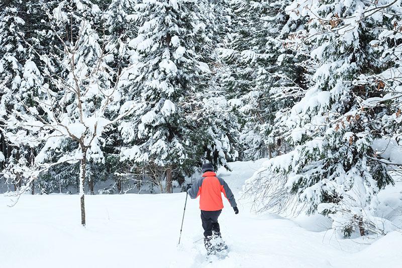 OGSA_14_Aizu_snowshoeing1_copy.jpg