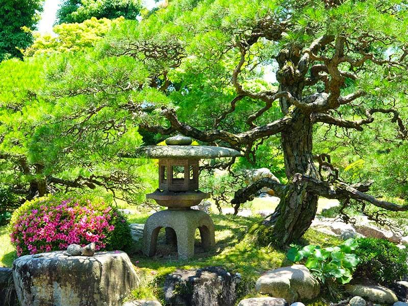 SQ_17_Hagi-Japanese-garden2.jpg