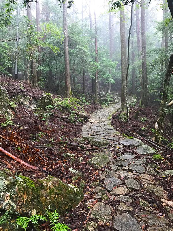 SGSTP_23_Ishidatami_path.jpg