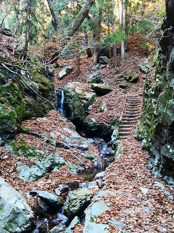 MCT_32_Ryori_waterfall.jpg