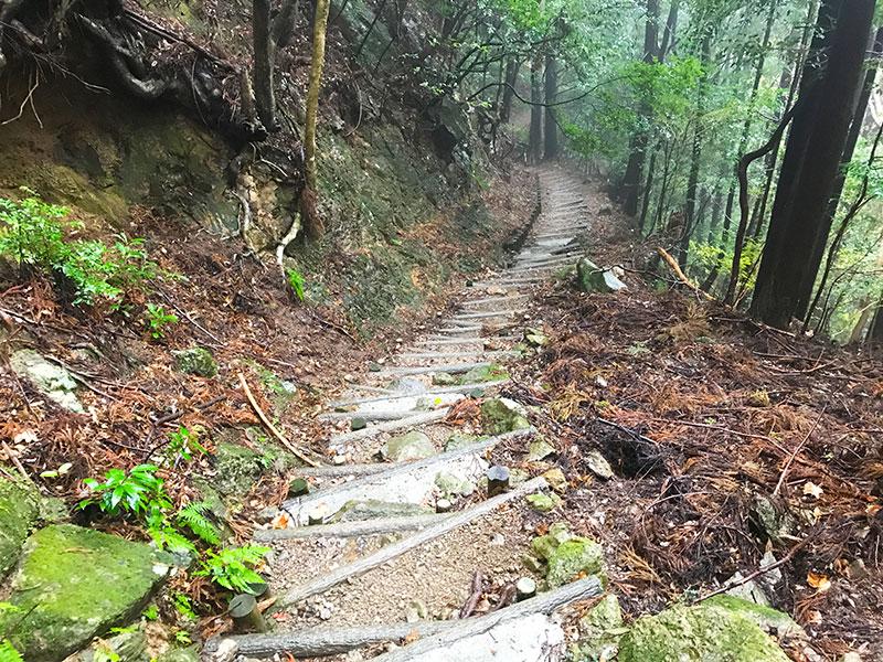 SGSTP_34_Shikoku_pilgrimage_path.jpg