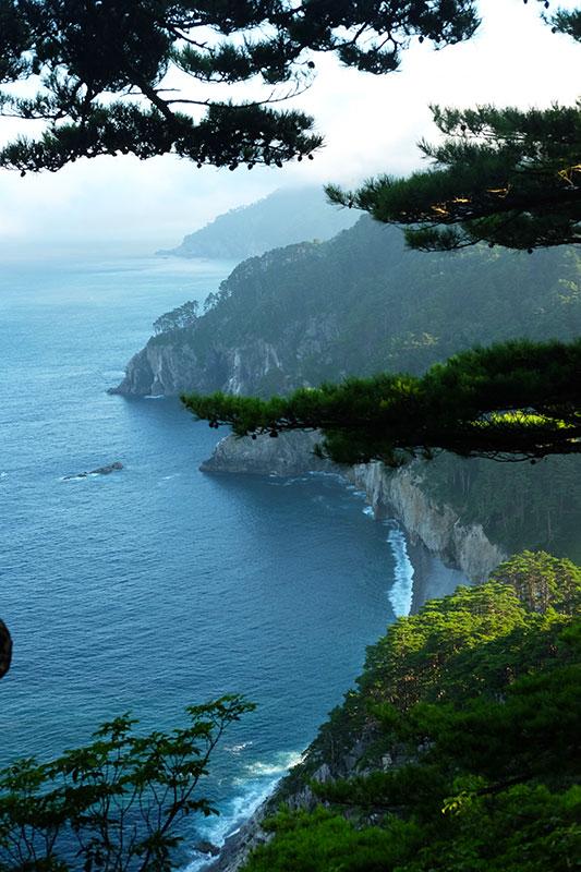 MCT_30_pine_cliffs.jpg