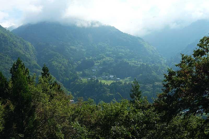 SMSR_033_Otari_valley2.jpg