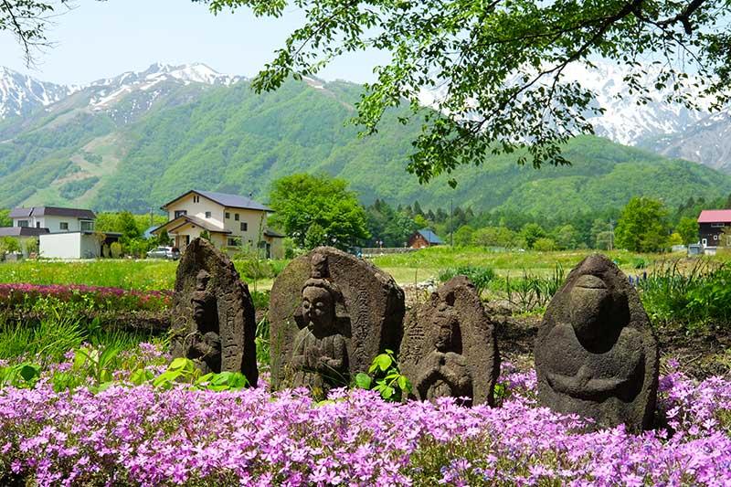 SMSR_025_Four_Buddhas.jpg
