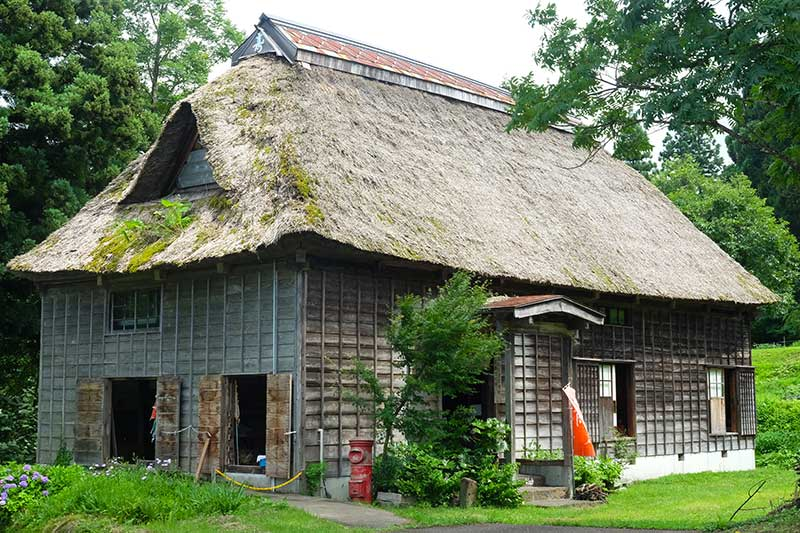 SMSR_011_Otari_thatched_building.jpg