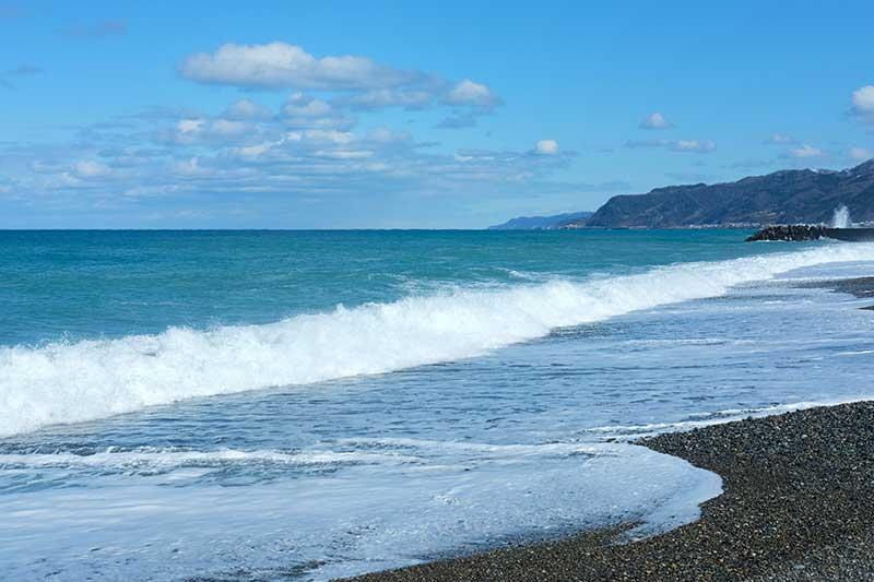 SMSR_Sea_of_Japan.jpg