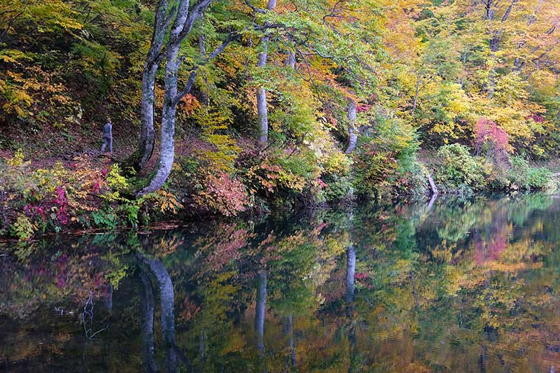 SMSR_021_Fall_colors_pond.jpg