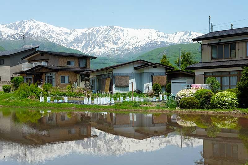 SMSR_016_Central_Alps_home.jpg