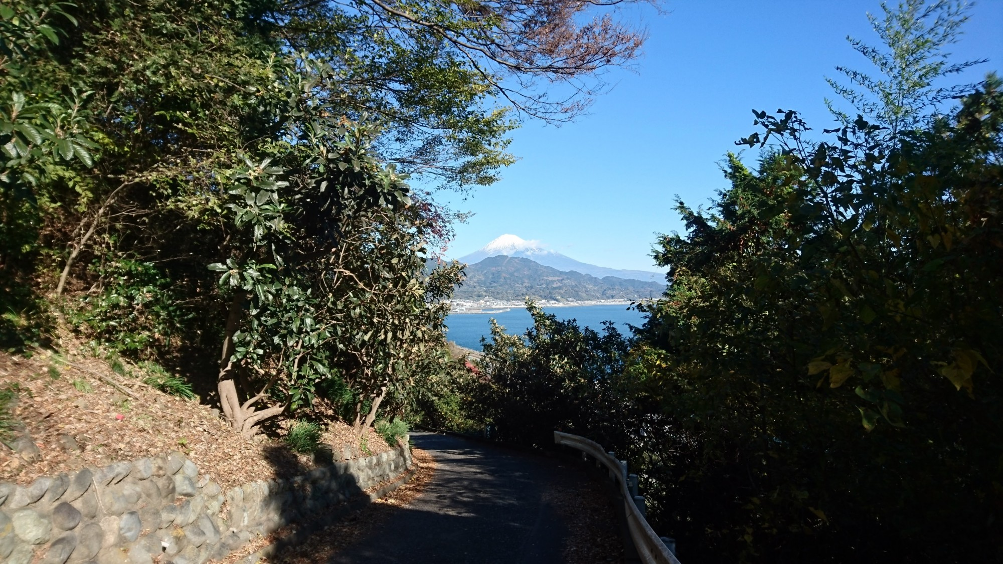 Tokaido_Trail_View_of_Mt._Fuji_01.JPG