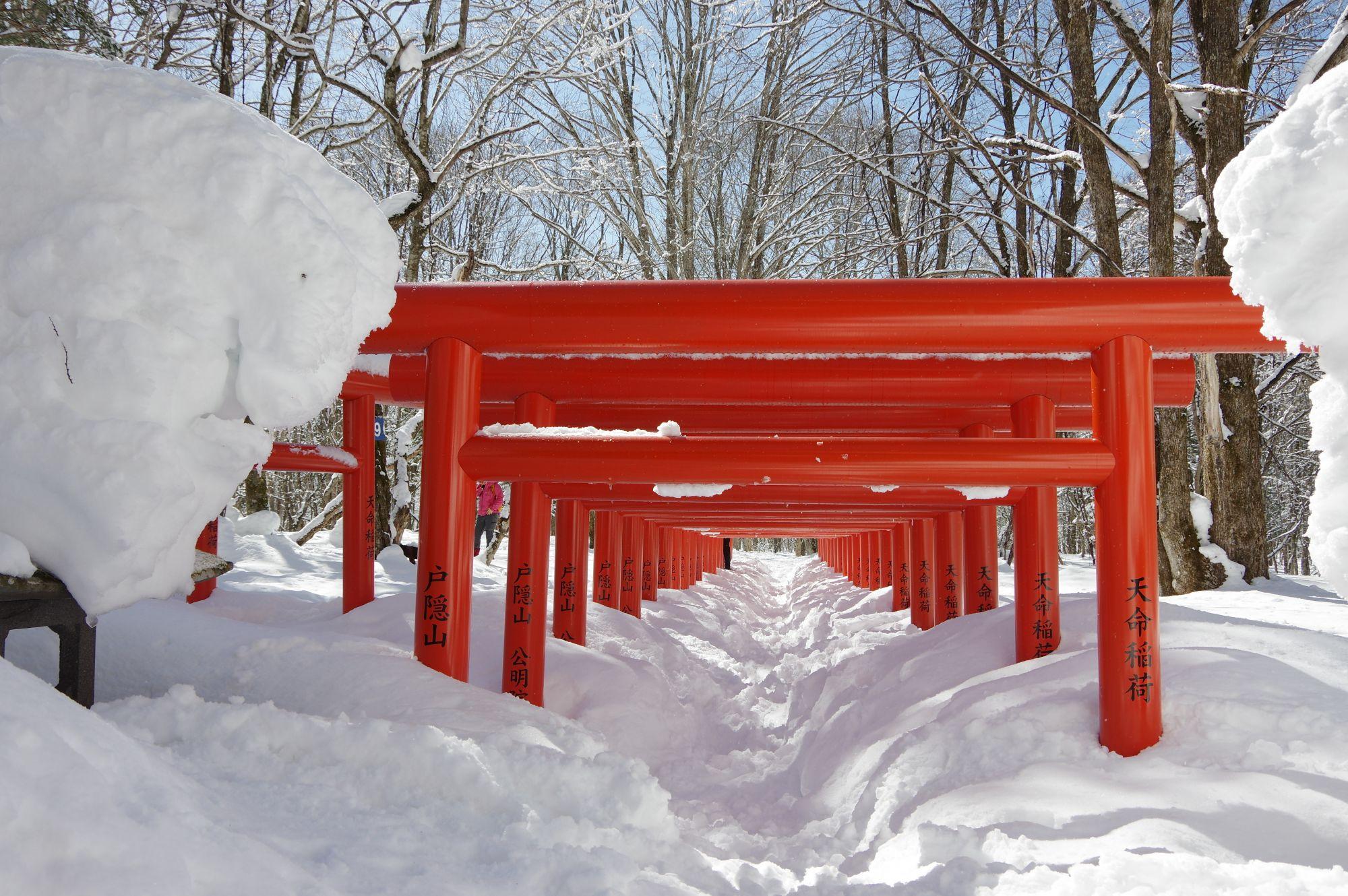 ETSC_snowtorii.jpg